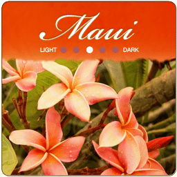 Maui Red Catuai Coffee Beans