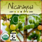 Organic Ceocafen Nicaragua Coffee
